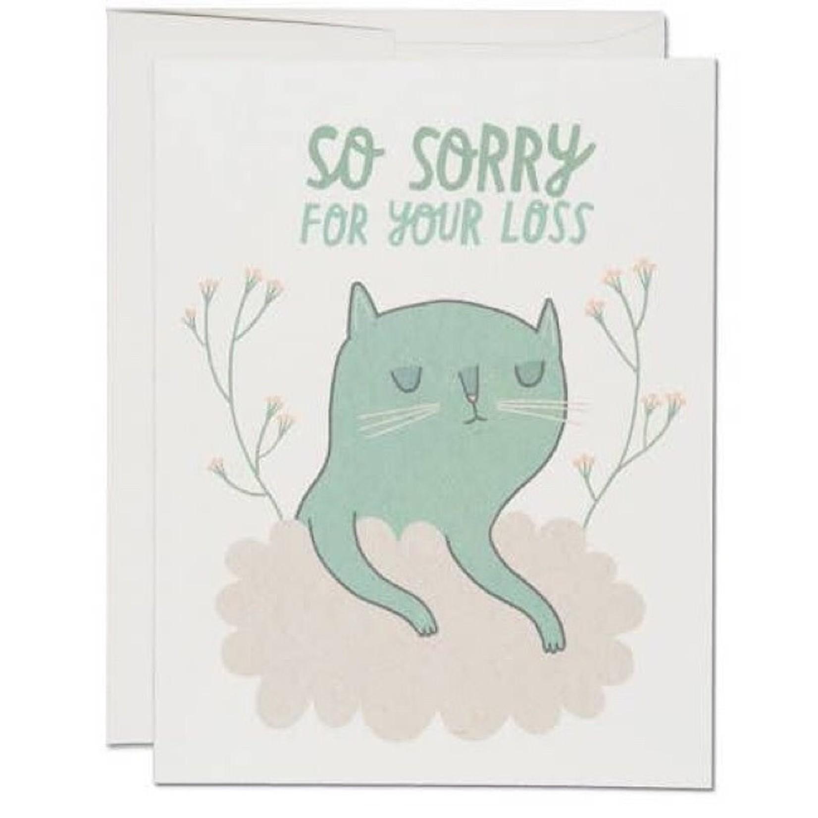 Card - Cat Sympathy