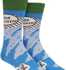 Blue Q Mens Socks - Look Within Fridge