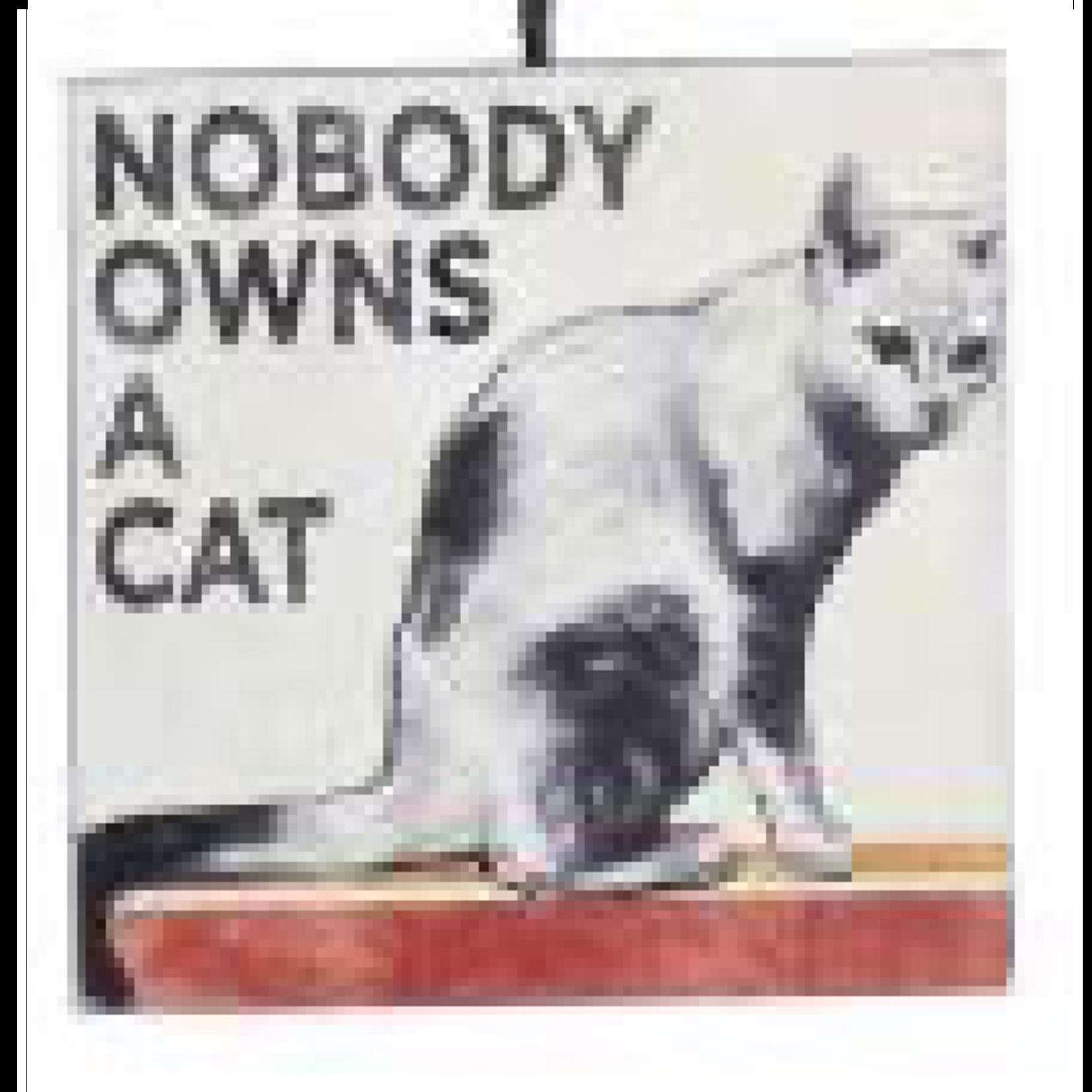 Ornament - Cat (Nobody Owns A Cat)
