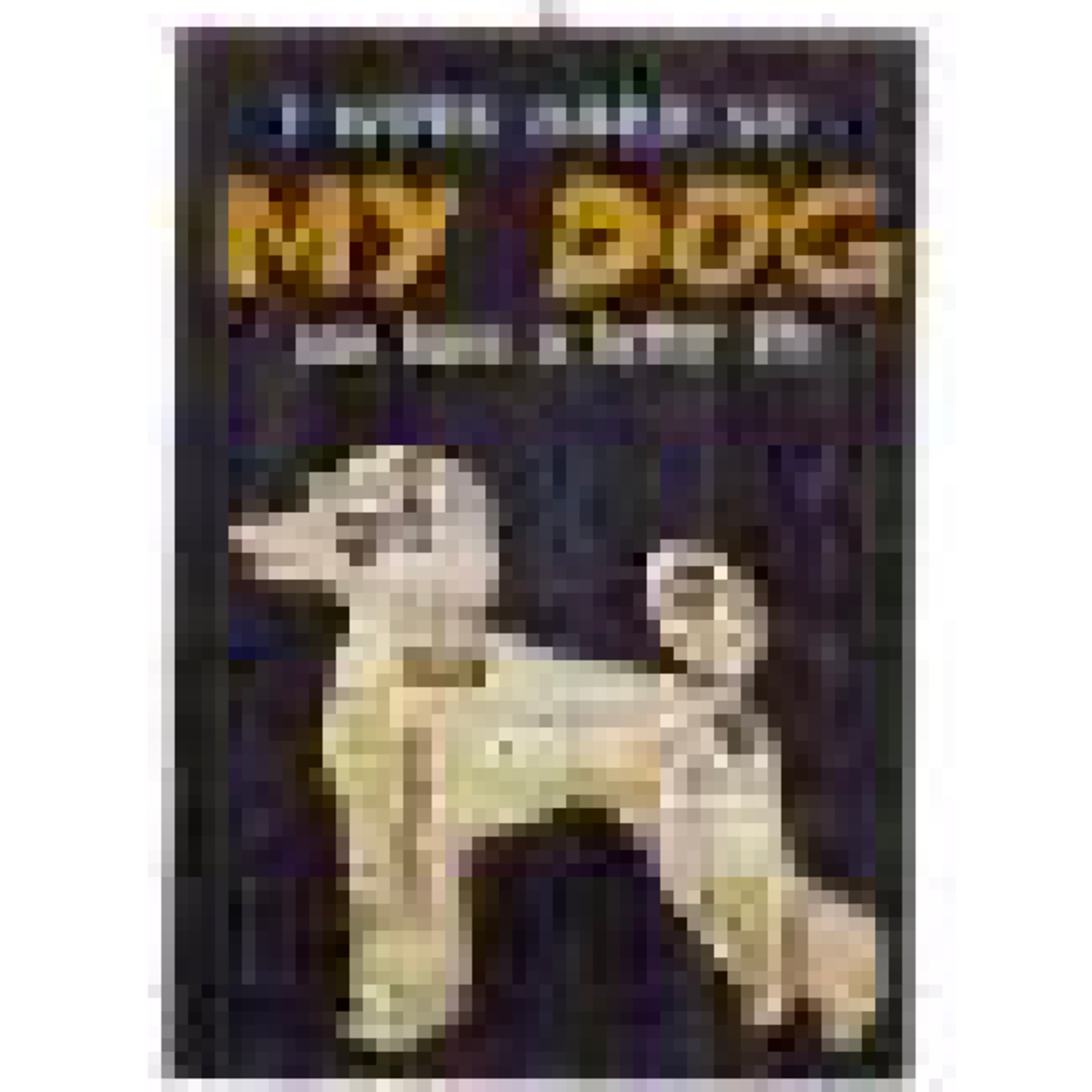 Ornament - Dog (I Work Hard So My Dog)