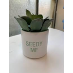 Planter - Seedy MF