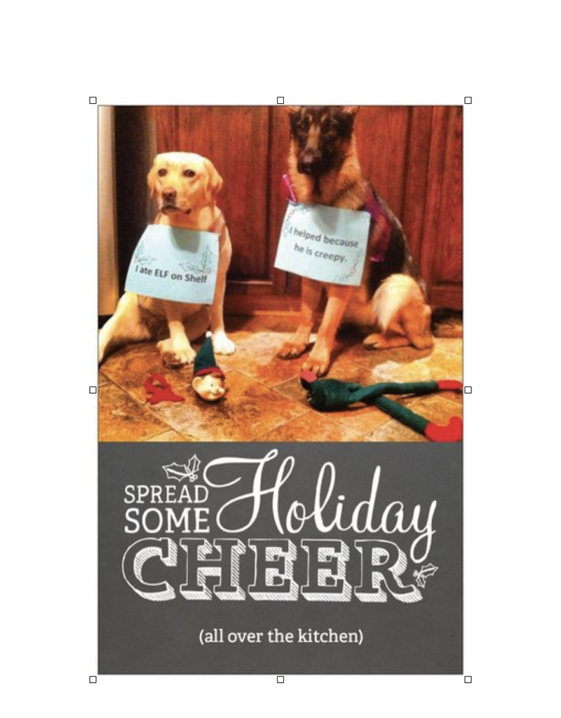 Holiday Card - Dogs Ate the Elf On The Shelf