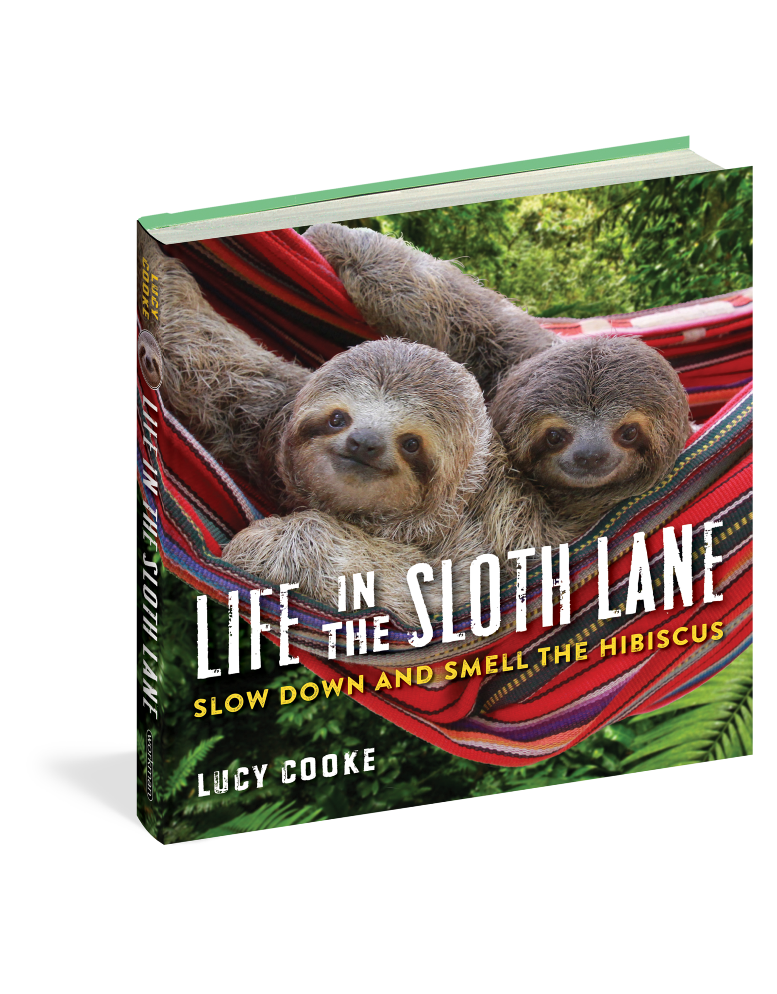Book - Life In The Sloth Lane