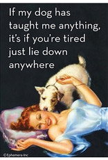 Magnet - If My Dog Has Taught Me Anything, It's If You're Tired Just Lie Down Anywhere