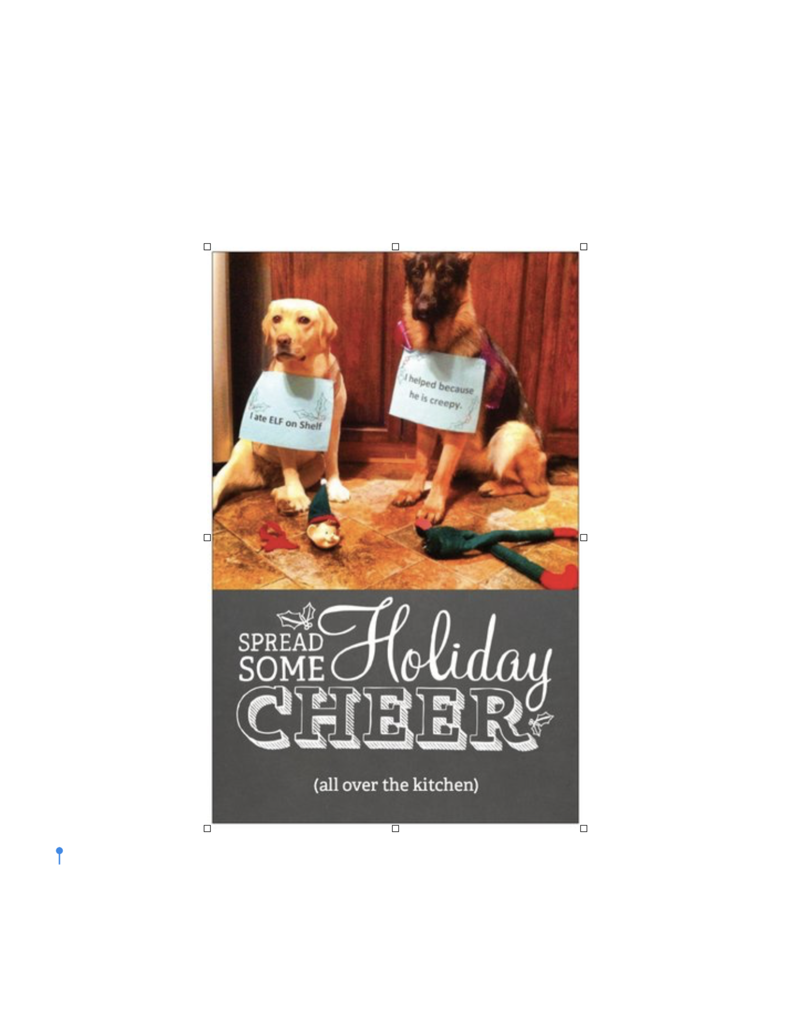 Card (Holiday) (10 Pack) - Dogs Ate The Elf On The Shelf