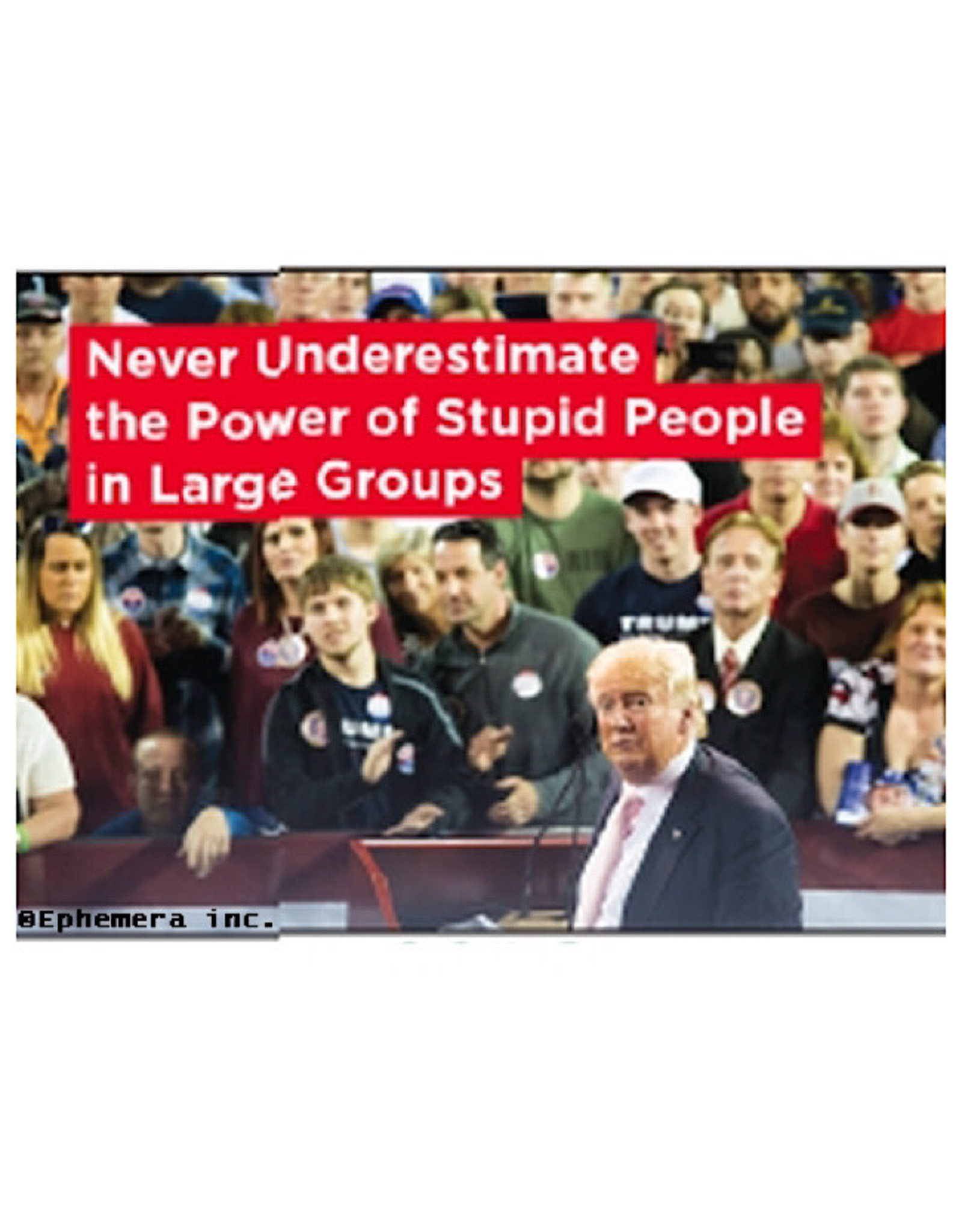 Magnet - Never Underestimate The Power Of Stupid People In Large Groups (Trump)