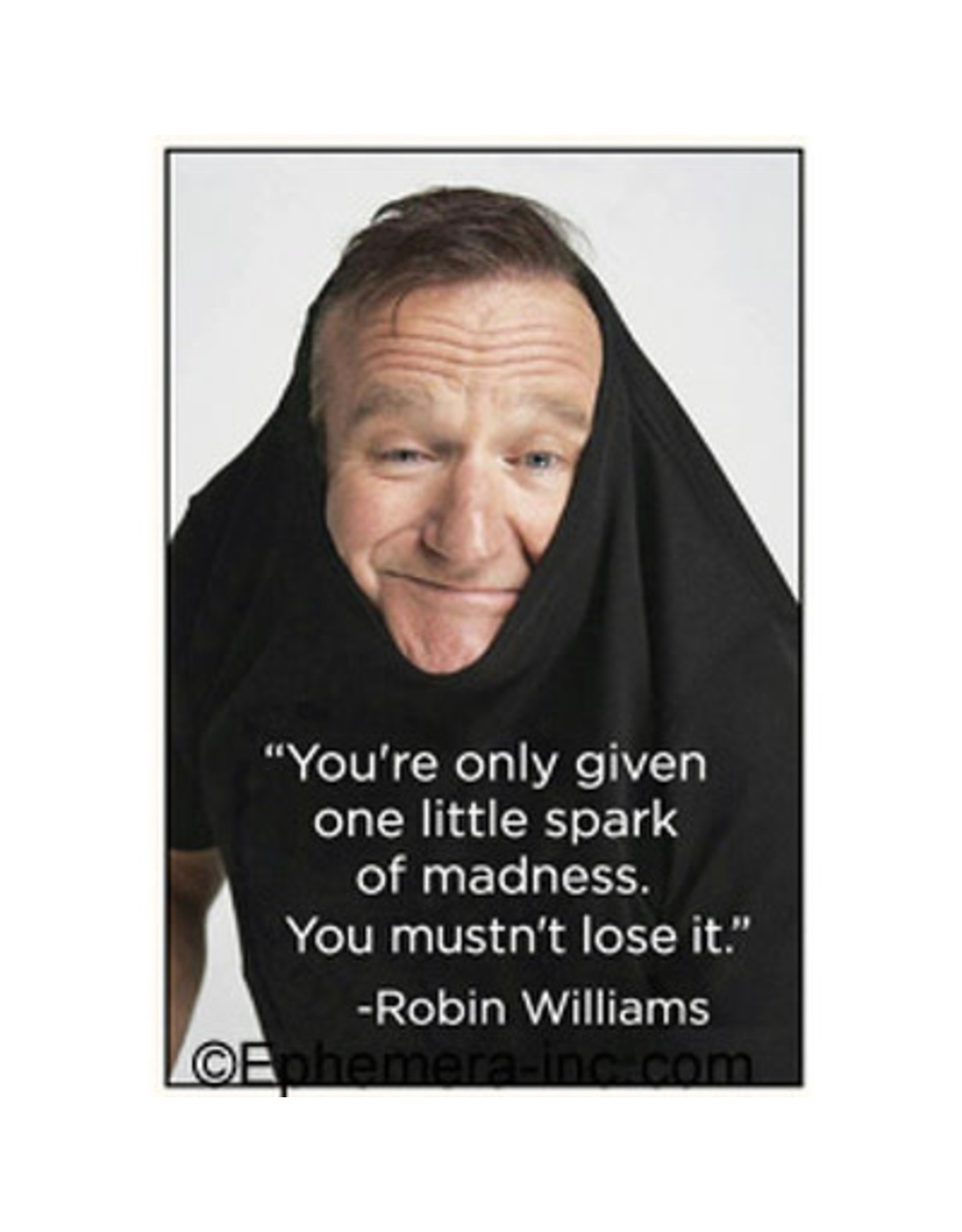 Magnet - You're Only Given One Little Spark Of Madness. You Mustn't Lose It. (Robin Williams)