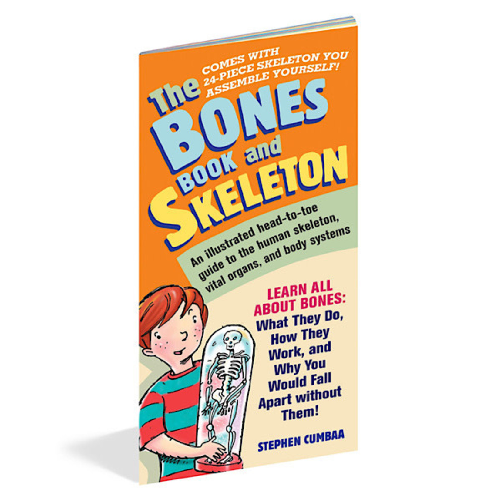 Book - The Bones Book And Skeleton
