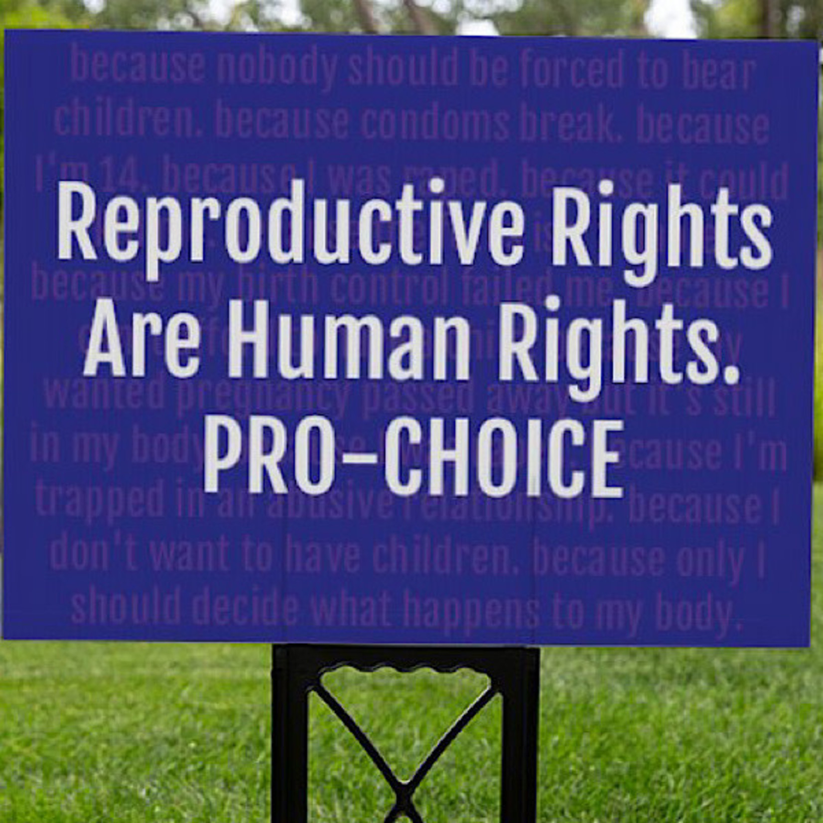 Bad Annie's Sign (Yard) - Reproductive Rights Are Human Rights. Pro-Choice