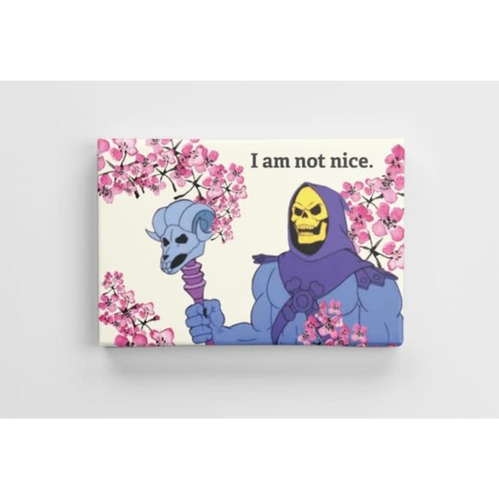 Bad Annie's Skeletor Art - I Am Not Nice