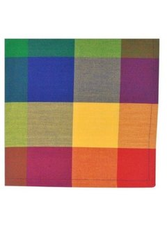 Palette Check Indian Summer Napkin