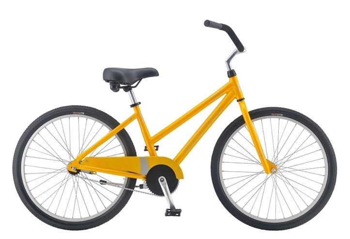 Standard Adult Bike