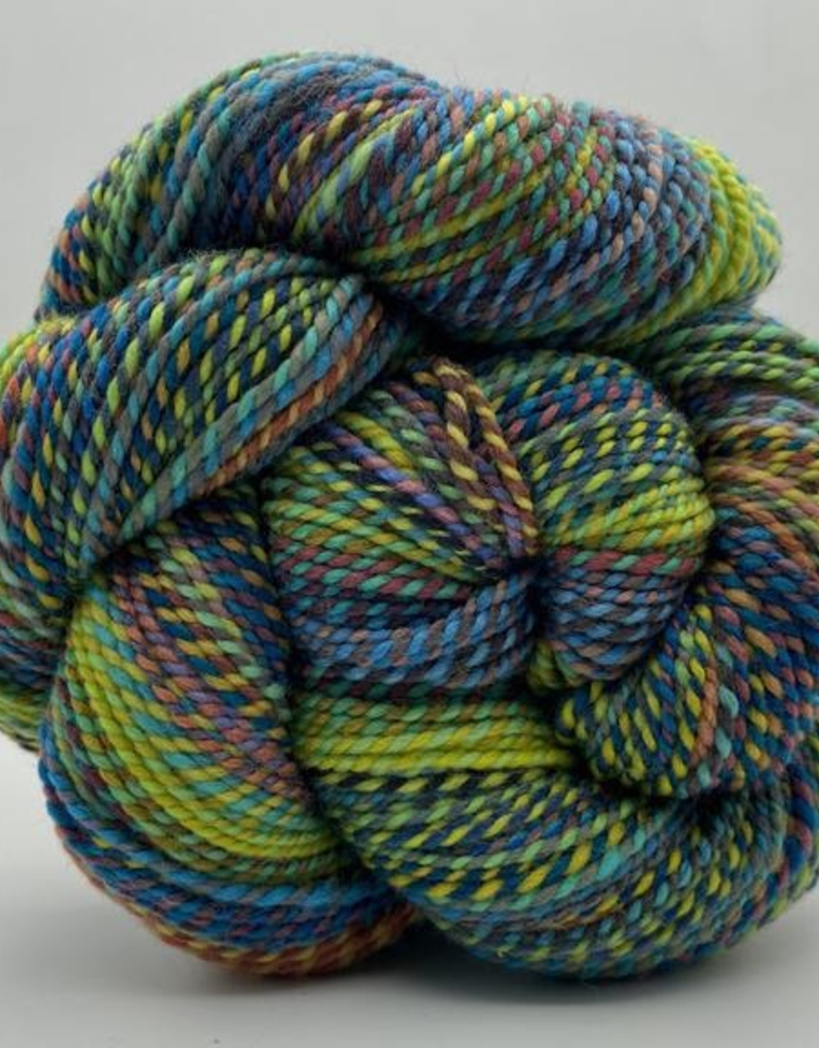 Spincycle Yarns Spincycle Yarns Dyed In The Wool
