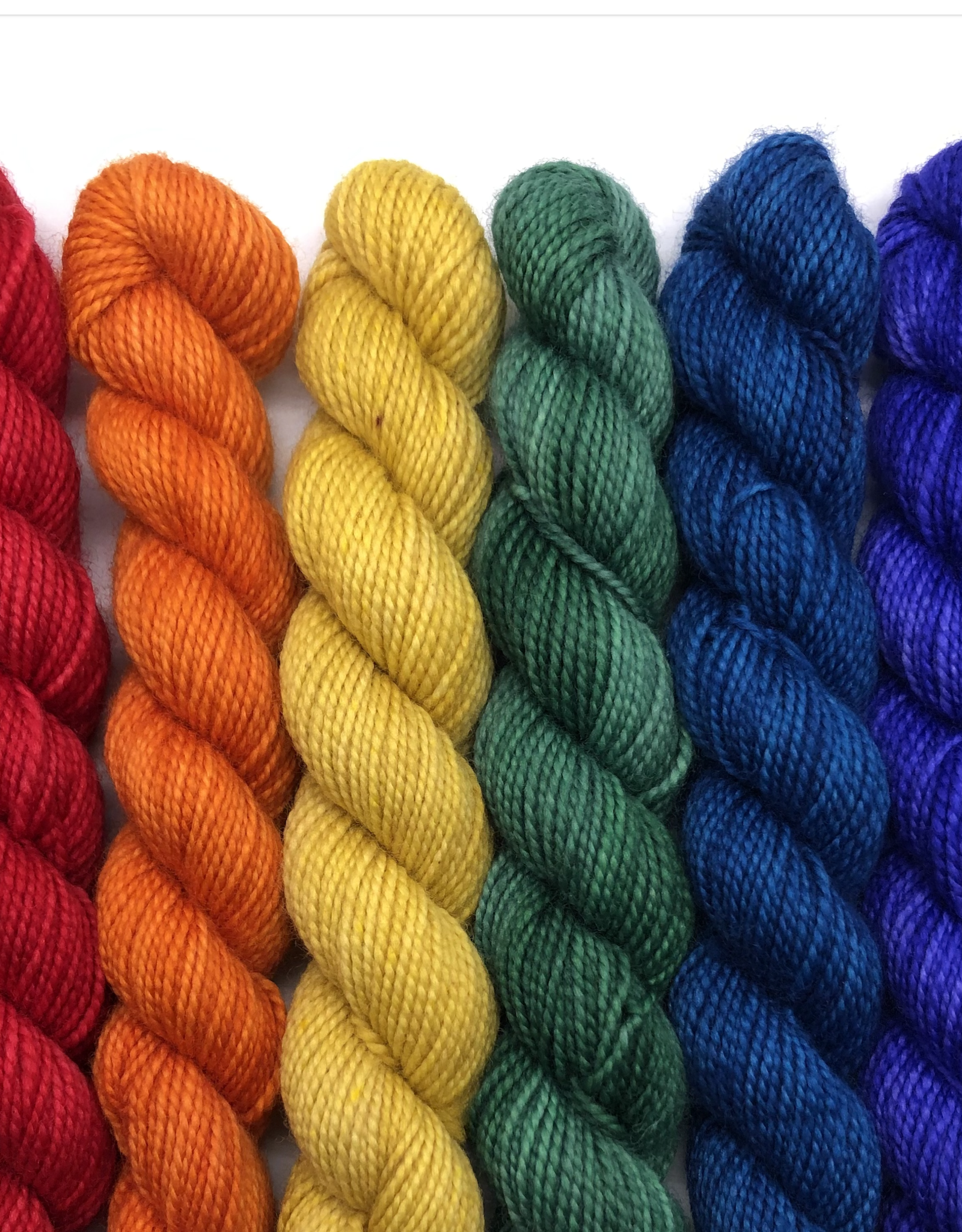 Emma's Yarn Emma's Practically Perfect Rainbow Mini Skein Set