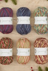 West Yorkshire Spinner Signature 4 Ply