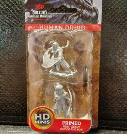 Dungeons & Dragons Nolzur's Marvelous Unpainted Miniatures: W6 Male Human Druid
