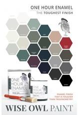 Wise Owl Paint One Hour Enamel Paint-Jet Black Qt