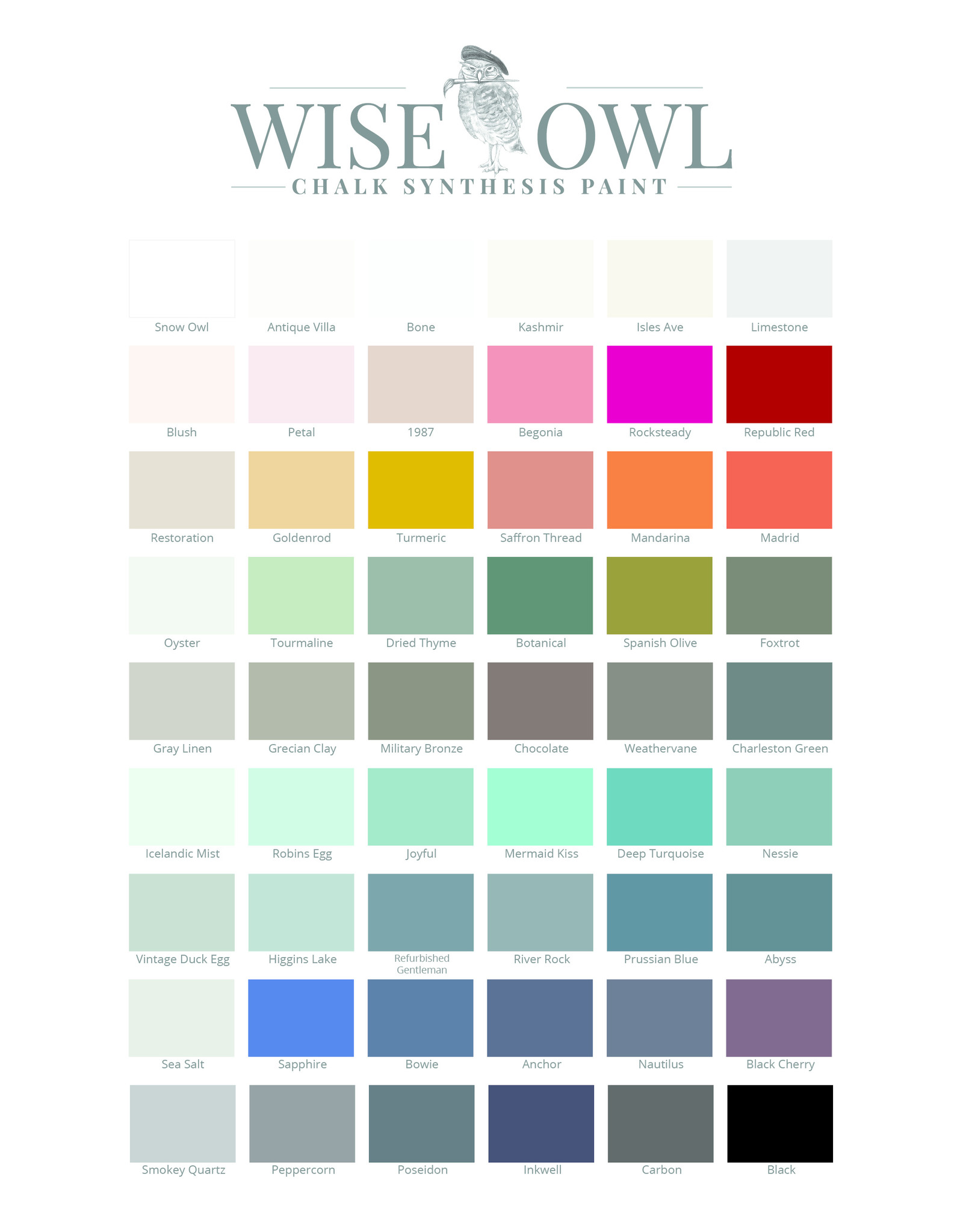 Wise Owl Paint Chalk Synthesis Paint Vintage Duck Egg-Pint