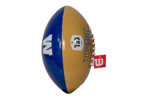 Wilson Panels Football