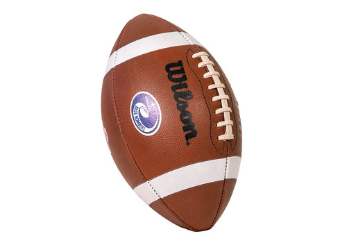 Wilson CFL Turf Traditions Football