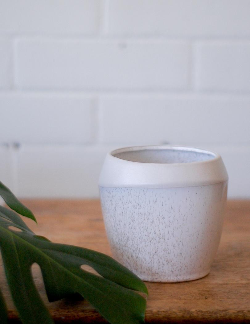 Joie Pot-1