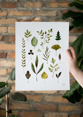 Joannie Houle Foliage  - Watercolour Art Print by Joannie Houle