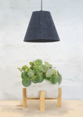 Modern Sprout Felt Pendent -Modern Sprout