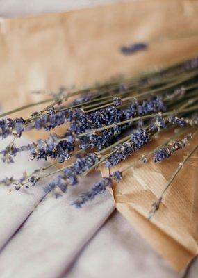 Zayat Aroma Essential Oil - Lavender