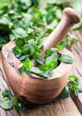 Zayat Aroma Essential Oil - Peppermint