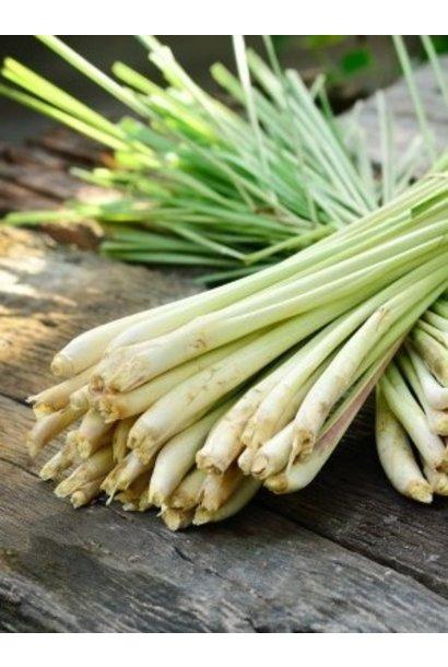 Essential Oil - Organic Lemongrass