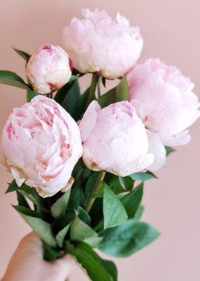 Rien que des Pivoines - Mini Bouquet - PRÉ-COMMANDER