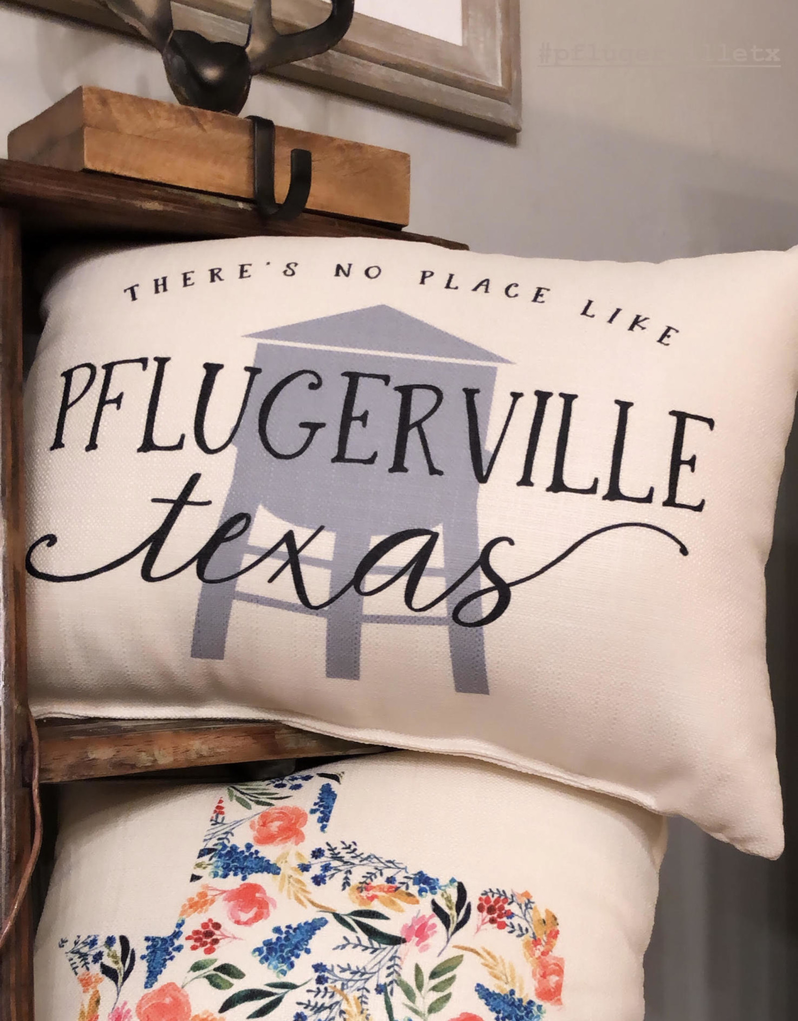 Wink Pflugerville Texas Pillow-Water Tower
