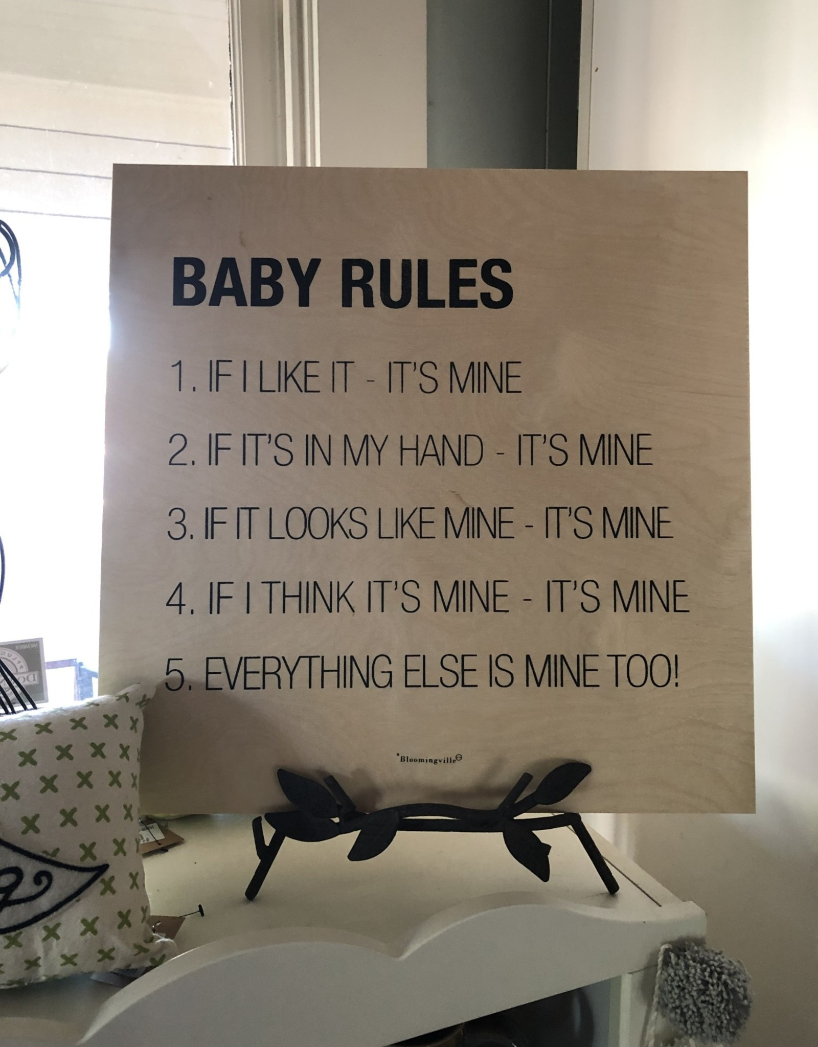 Wink Baby Rules Wall Decor