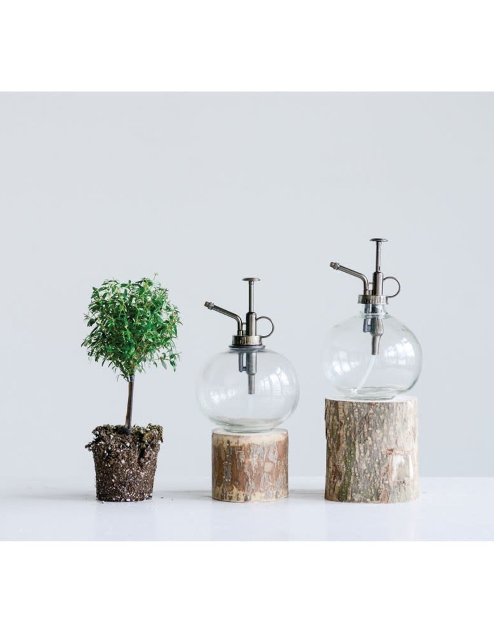 Wink Glass Plant Mister