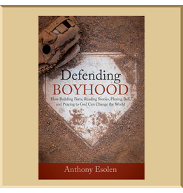 Defending Boyhood: How Building Forts, Reading Stories, Playing Ball, And Praying To God Can Change The World