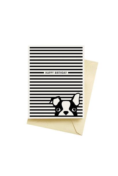 dog stripes birthday card