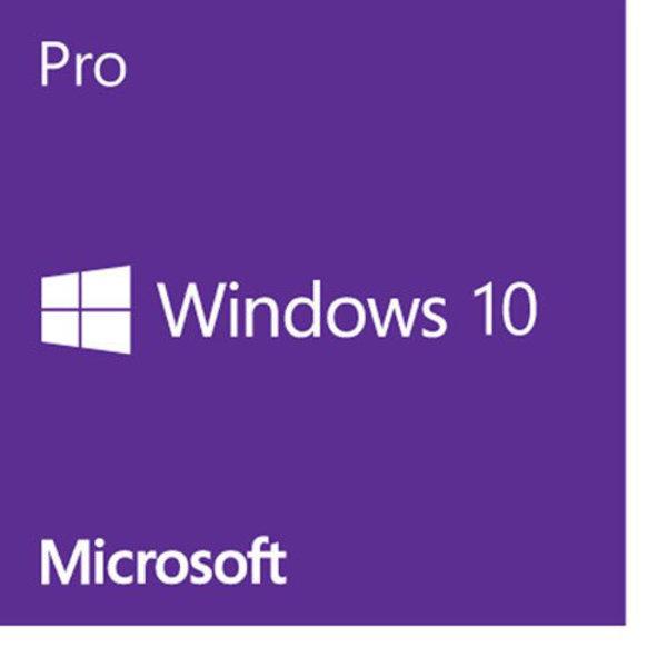 Apple Windows 10 Professional