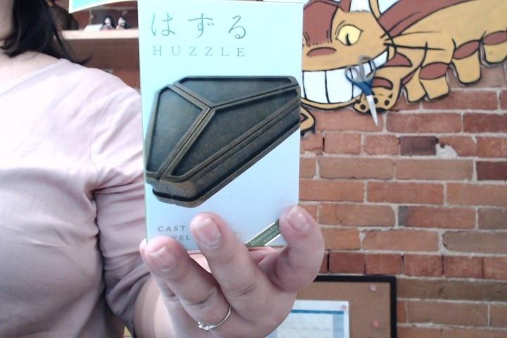 Hanayama Cast Metal Puzzle