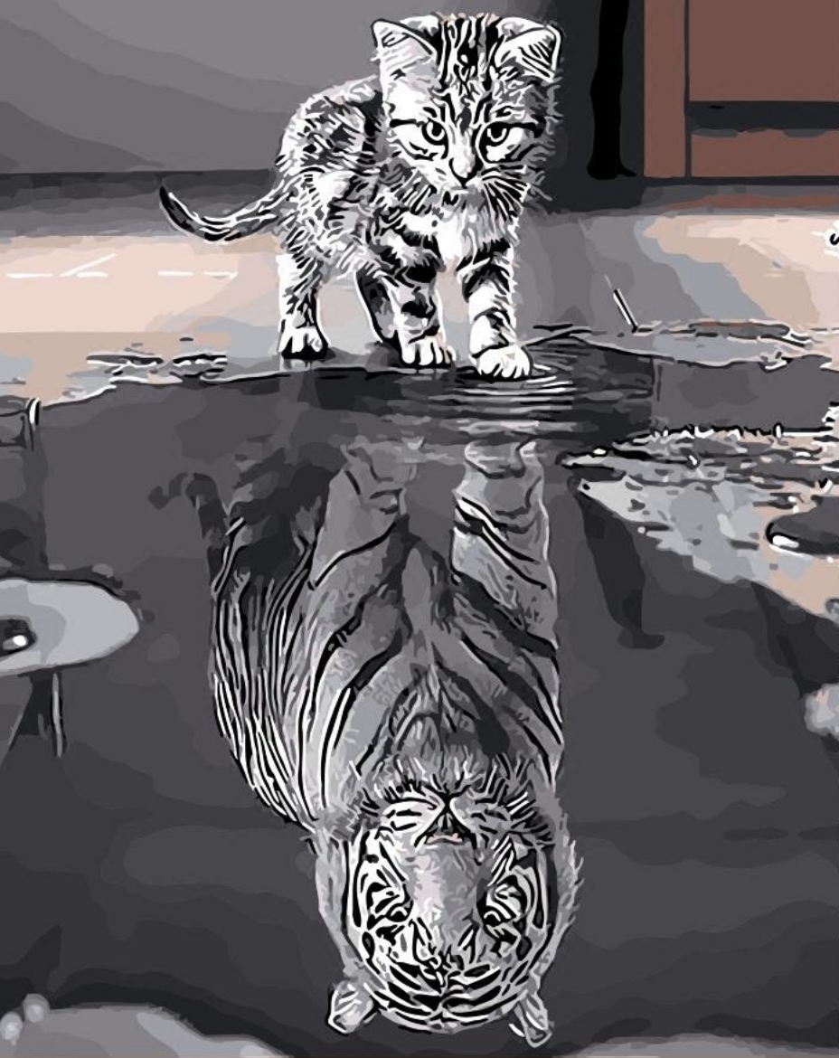 Striped Cat Tiger Reflection DIY Painting