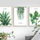 Green Plants DIY Dot Painting