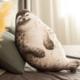 Chubby Seal Plush
