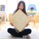 Toast Cushion Plush