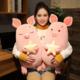 Star Pig Plush