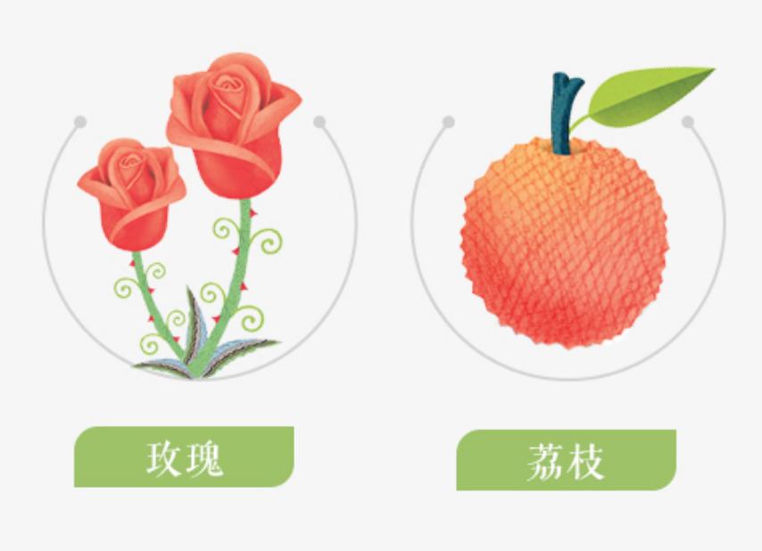 Nong Fu Nong Fu Rose Lychee Black Tea 500ml