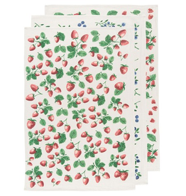 Now Designs S20 Floursack Dishtowel Set3, Berry Patch