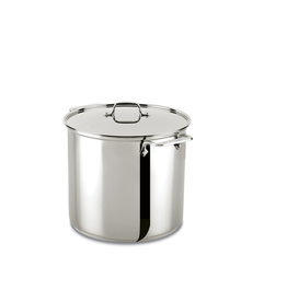 All-Clad PROMO AC Stainless 16 Qt. Stockpot w/ Lid