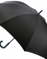 Black Typhoon Umbrella