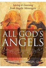 All God's Angels: Loving and Learning from Angelic Messengers  by Martin Shannon CJ