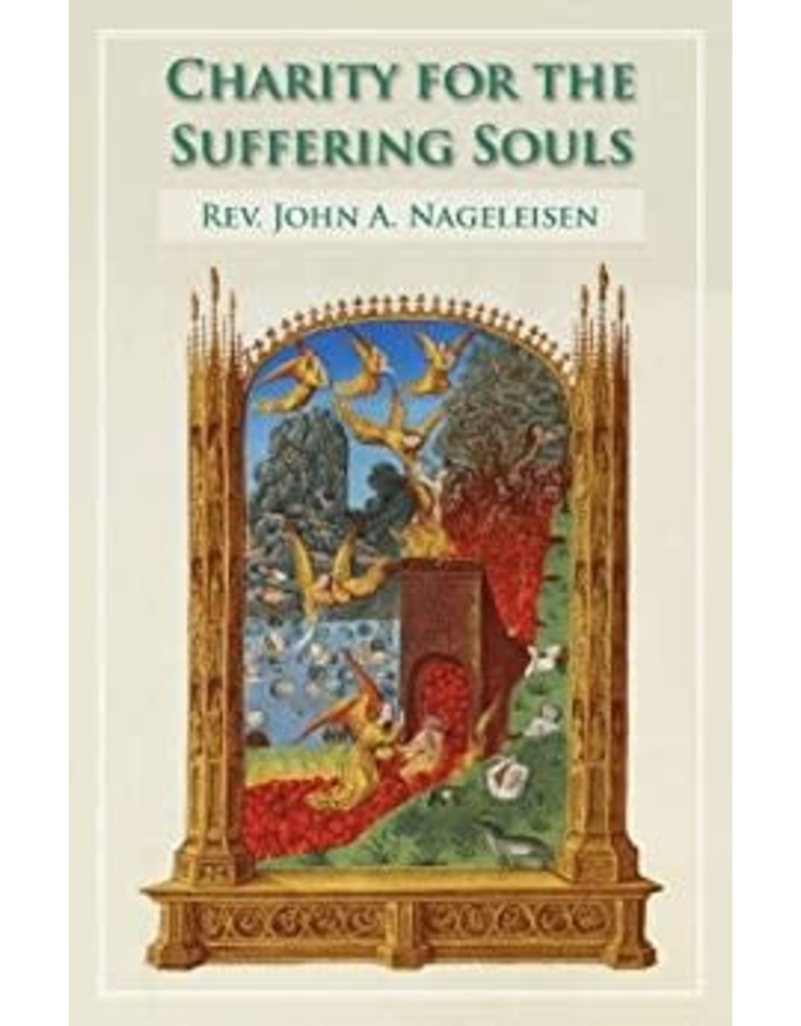 Tan Books Charity For The Suffering Souls: An Explanation Of The Catholic Doctrine Of Purgatory by Rev. Fr. John A. Nageleisen (Paperback)