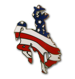 Tom Balding American Flag Steamboat Pin